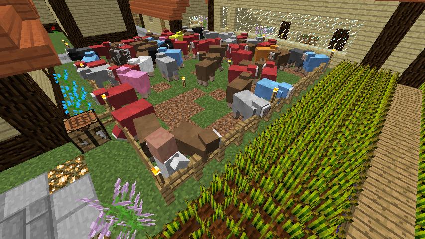 ぷっこ村の畜産業4