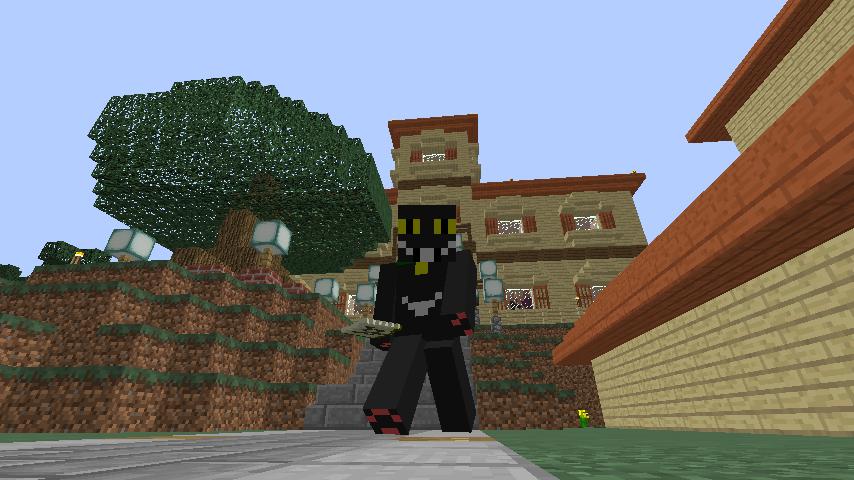 Minecrafterししゃもがマインクラフトでぷっっこ村に地図でポスターを作成して、茶番を演じる7