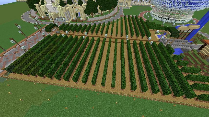 Minecrafterししゃもがマインクラフトでぷっこ村にブドウ園を作る1
